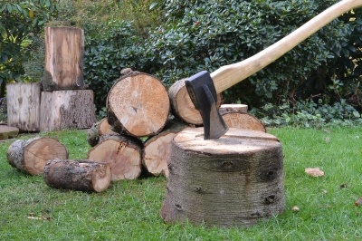 Axe and wood © Grant Cochrane