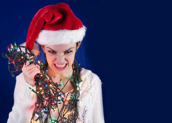 Holiday Maddness © mario beauregard | dollarphotoclub.com